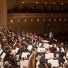 Viennese Bonbons: The Wiener Philharmoniker in New York
