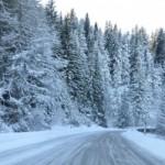 Winter Storms, Cold Snap Disrupt Travel in Europe, Danube Frozen, 3 Killed in Kosovo