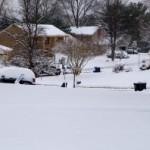 Holiday Snowstorm to Wreak Travel Havoc