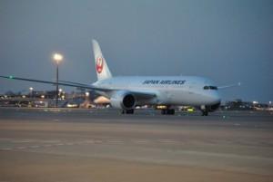 JAL 787 Dreamliner