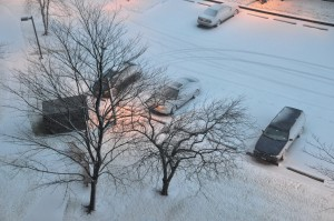 Light snow in New York City on Friday