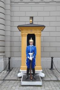 A member of the Royal Guard at Stockholm's Royal Palace (Kungliga slottet)