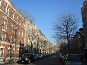 A tree-lined street in Park Slope