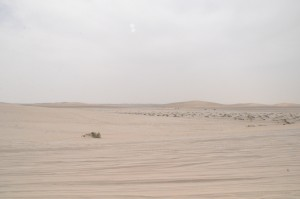 A desert in the Middle East