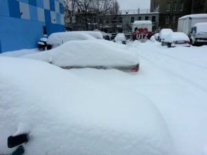 Cars buried under snow in Brooklyn