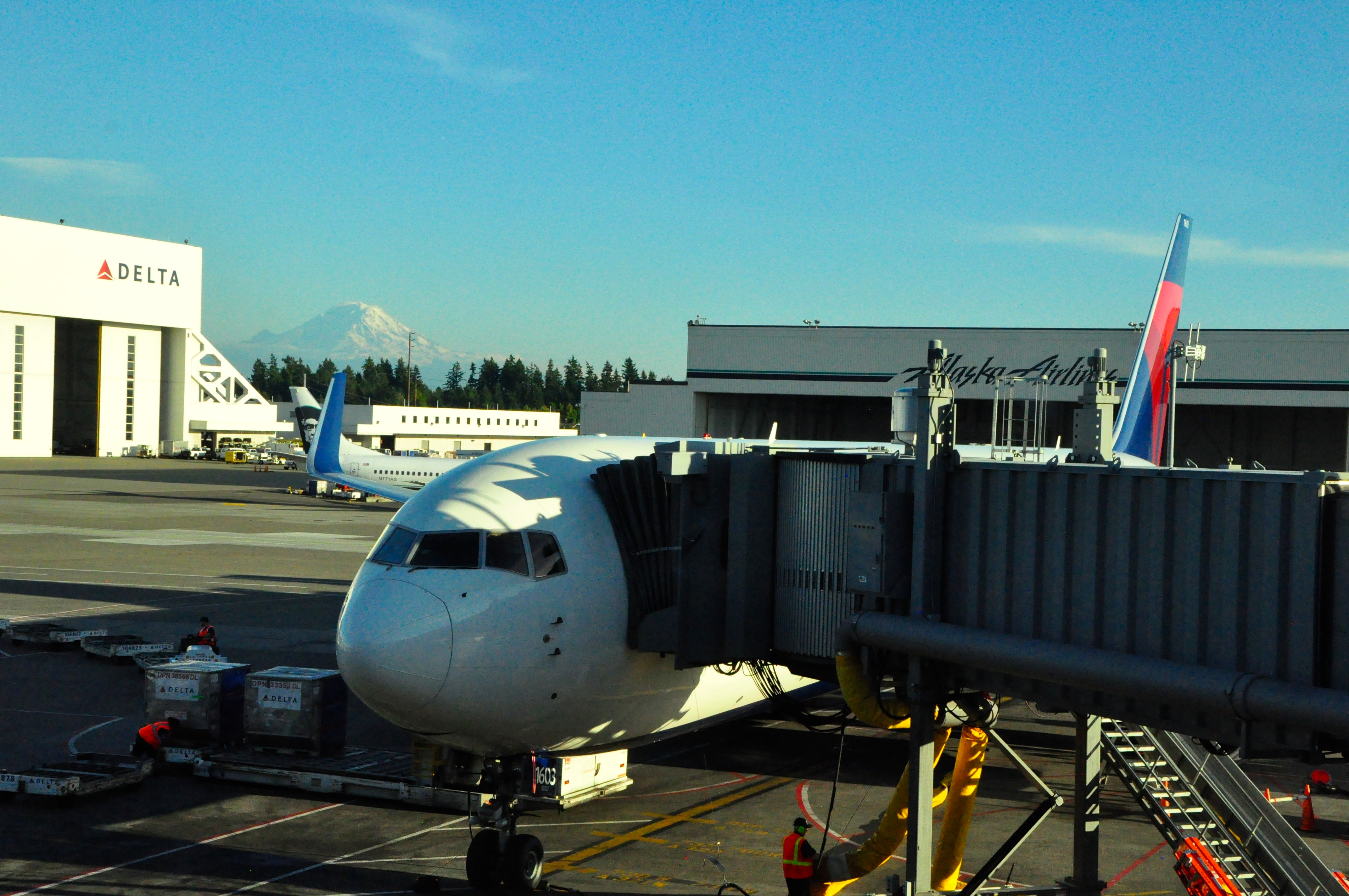 A Delta aircraft at the gate in Seattle