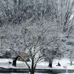 Brrr! Every U.S. State to See Dangerously Low Freezing Temperatures